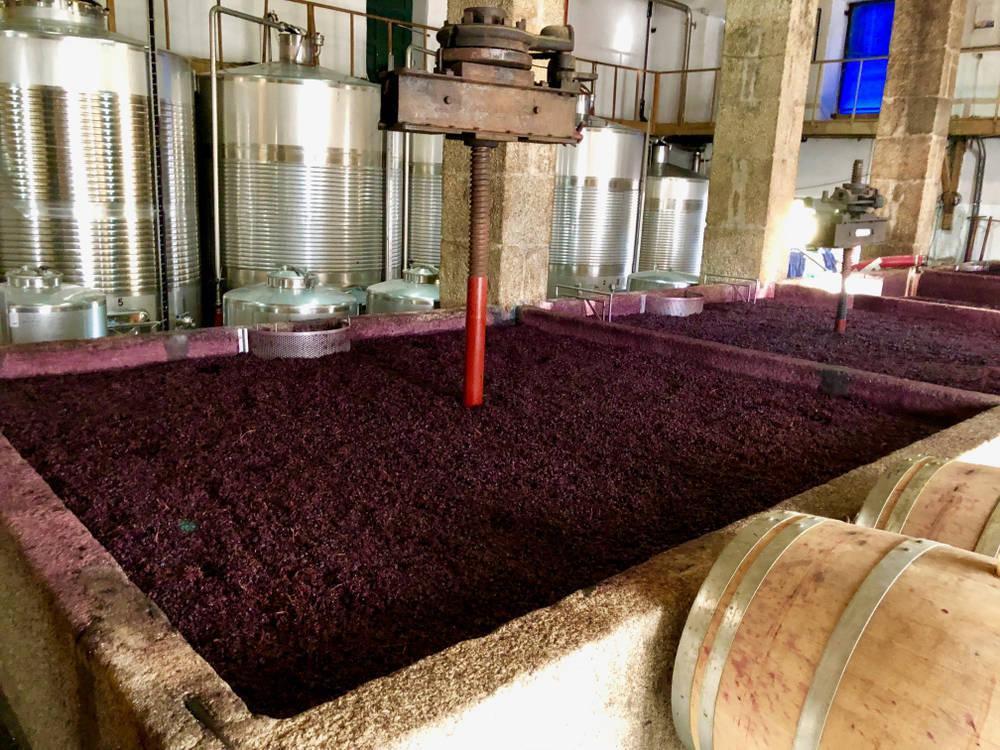 El otro proceso del vino